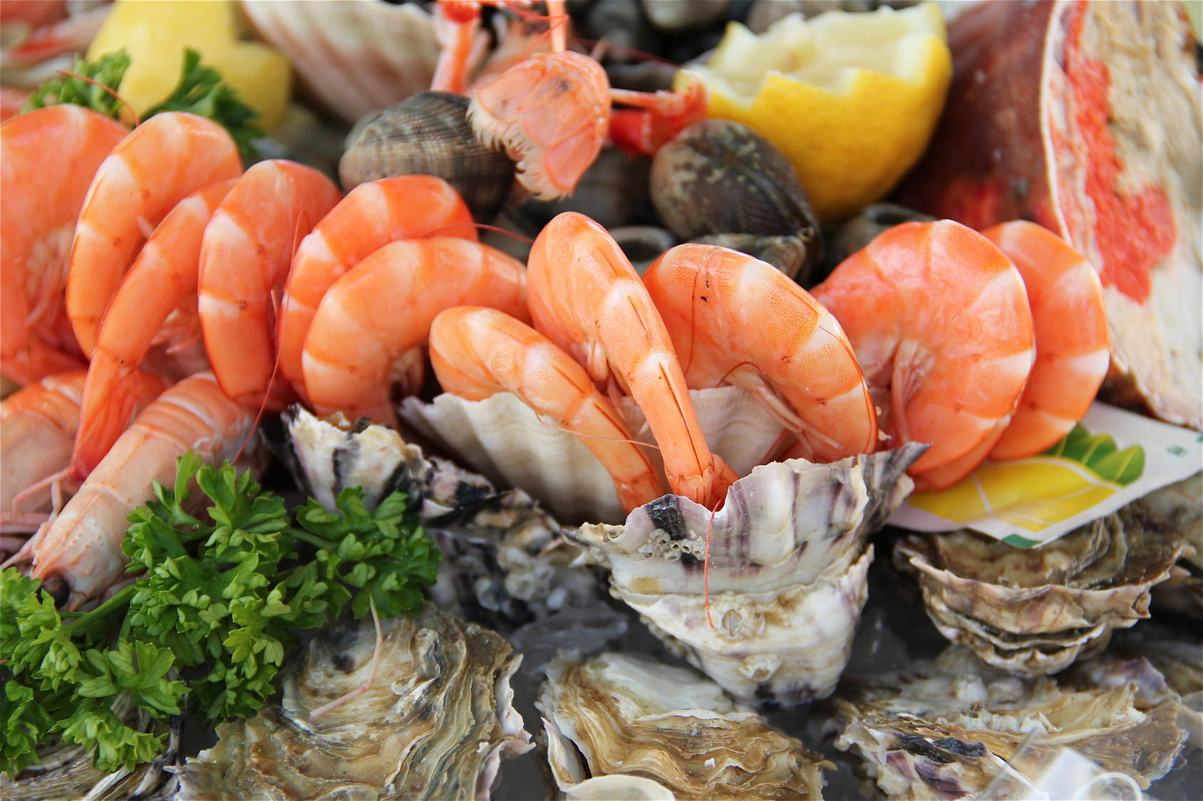 Attention aux allergies croisées acariens-crevettes-escargots !
