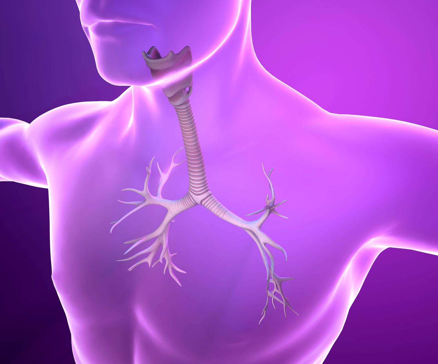« Chauffer les bronches » pour traiter l'asthme sévère